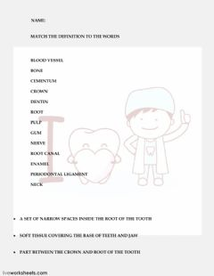 Interactive worksheet TOOTH ANATOMY 2 (PRONUNCIATION)