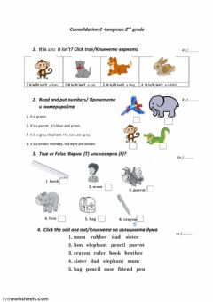 Interactive worksheet Consolidation2