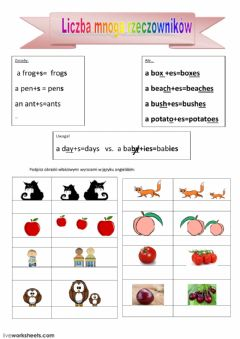 Interactive worksheet Nouns-plural