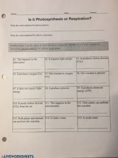 Interactive worksheet PS.vs CR Review Sheet