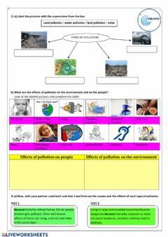 Interactive worksheet Pollution