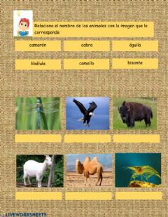 Interactive worksheet Repaso del nombre de animales