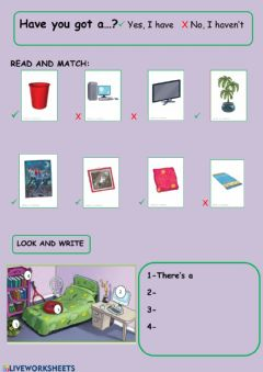 Interactive worksheet Have you got...?