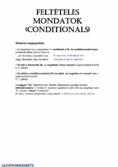 Interactive worksheet Conditionals