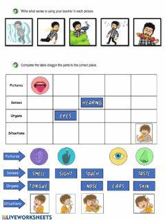 Interactive worksheet Review: Interaction