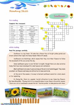 Interactive worksheet Sunflower