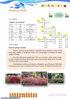 Interactive worksheet Tulip