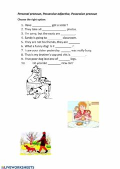 Pronouns and adjectives worksheet preview