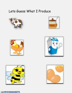 Interactive worksheet What Animals produce
