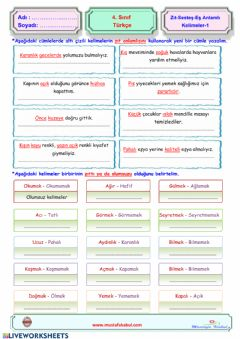 Interactive worksheet Türkçe