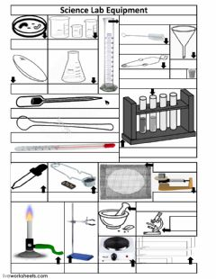Interactive worksheet Science Lab equipment