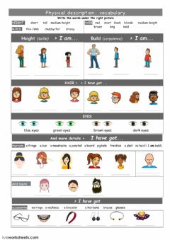Physical appearance vocabulary worksheet preview