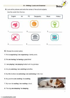 Interactive worksheet Writing, Lexis and grammar test