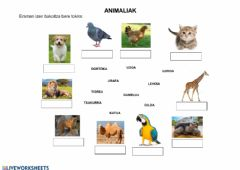 Interactive worksheet Animaliak