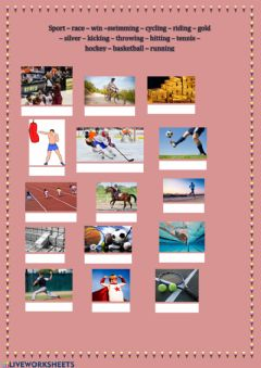 Interactive worksheet Sports and race