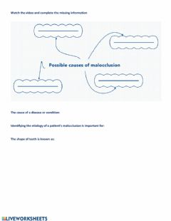 Interactive worksheet Malocclusion