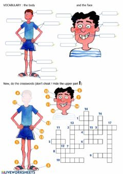 Interactive worksheet The Body and the face: vocabulary