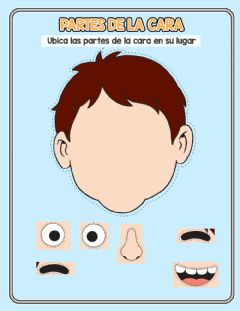 Interactive worksheet Partes de la cara