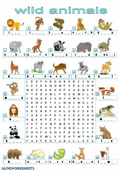 Ficha interactiva Find the animals!