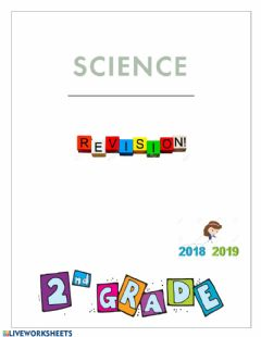 Ficha interactiva Science Revision 1