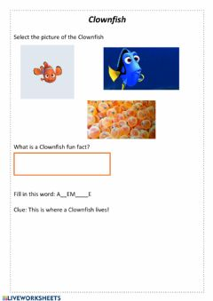 Interactive worksheet Clownfish
