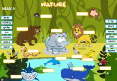 Ficha interactiva Animals (Drag-drop)
