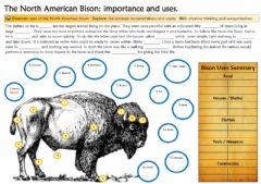 Interactive worksheet Bison americano