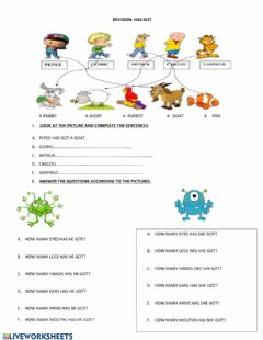 Interactive worksheet Has got