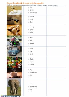 Interactive worksheet Choose the right adjective and write the opposite