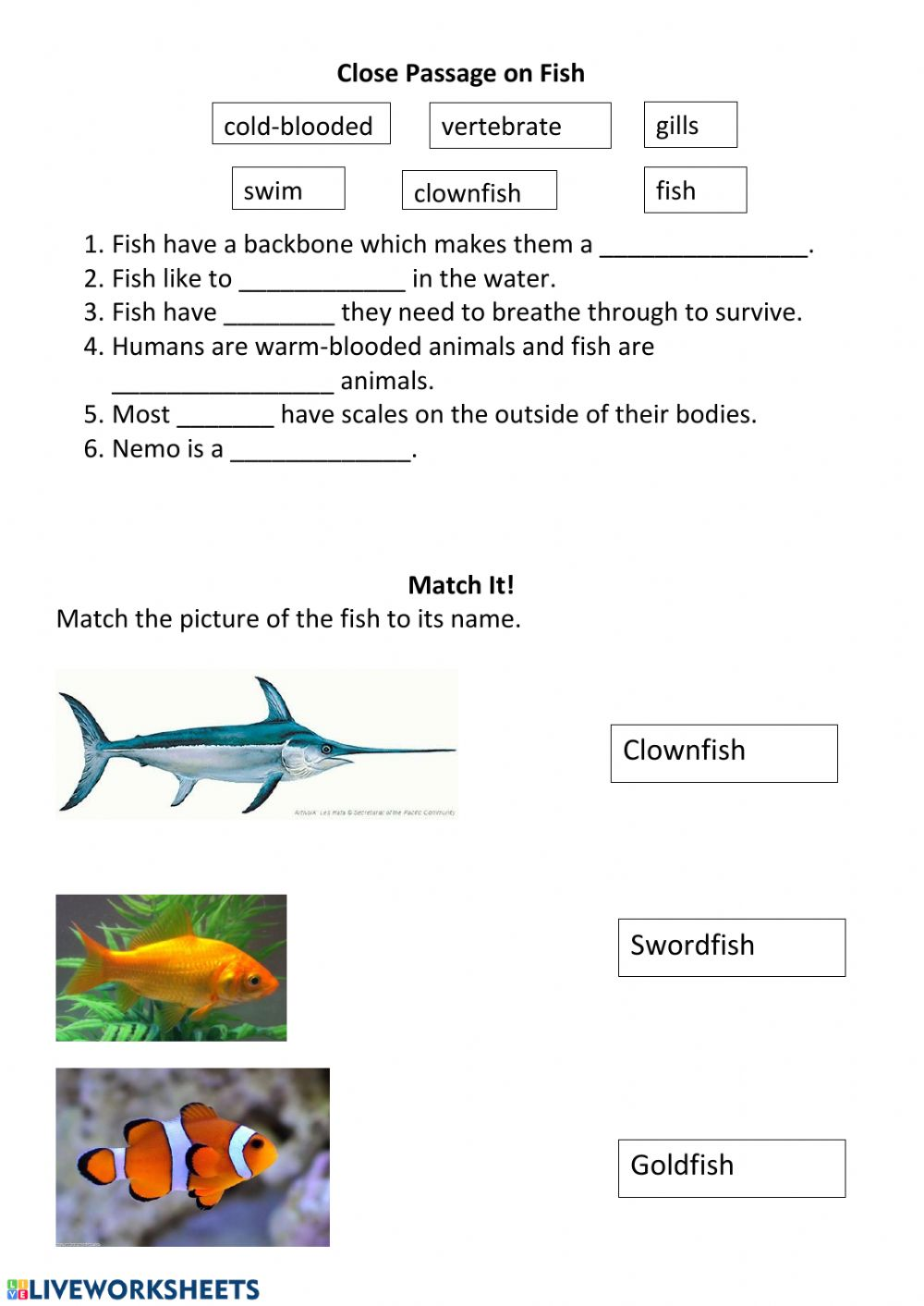 Fish Worksheet worksheet
