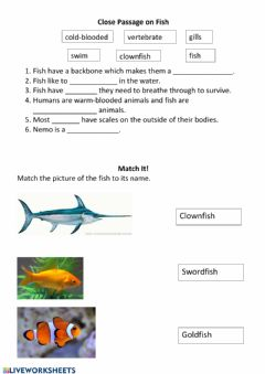 Interactive worksheet Fish Worksheet