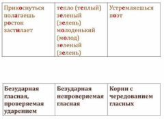 Interactive worksheet Папышева Яна