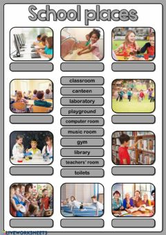 Ficha interactiva School places