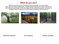 Interactive worksheet Guiding Questions