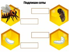 Interactive worksheet Пчела 3