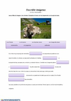 Interactive worksheet Decribir imagenes