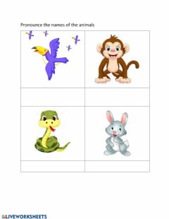 Interactive worksheet Use of can