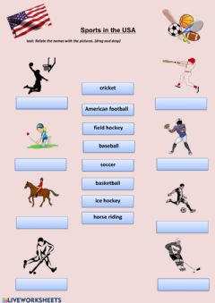 Interactive worksheet Sports in the USA
