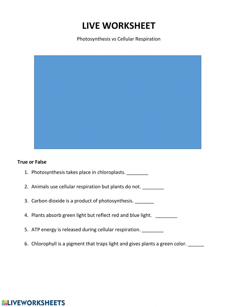 Live Work Sheet: Photosynthesis vs Cellular Respiration ...