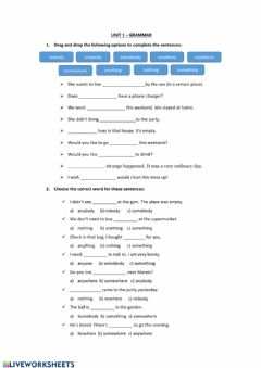 Interactive worksheet Unit 1 - grammar: Indefinite pronouns