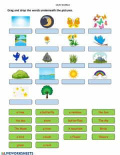 Interactive worksheet Our World 1 - Unit 2 - My world