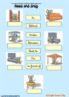 Prepositions of place worksheet preview