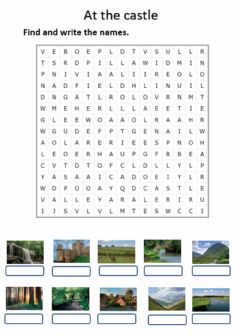 Ficha interactiva At the castle. Wordsearch
