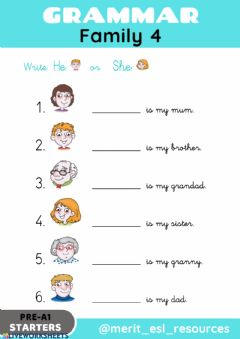 Interactive worksheet Family - Write He-She
