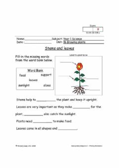 Interactive worksheet Stems and leaves