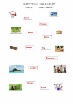 Interactive worksheet Match the picture