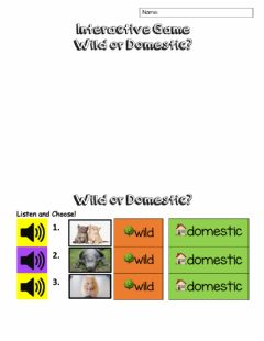 Interactive worksheet Wild and Domestic Animals