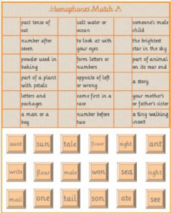 Interactive worksheet Homophones Match 1