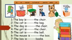 Ficha interactiva Preposition and present simple