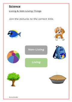 Interactive worksheet Living Non Living